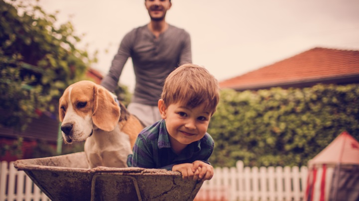 A father is pushing his son and dog in a wheelbarrow. Find the right pet insurance with Comparis.